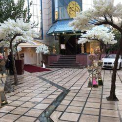 ورودی و فضای باز تالار مجلل کیان